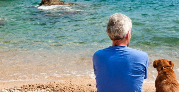 Perda da qualidade de segurado do falecido e o benefício de pensão por morte