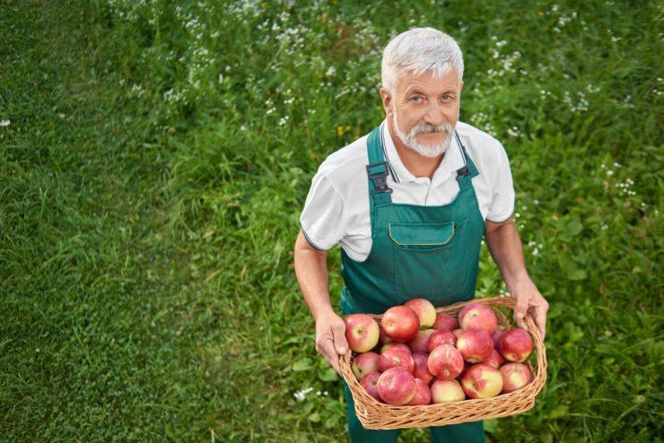 Aposentadoria por idade do trabalhador rural