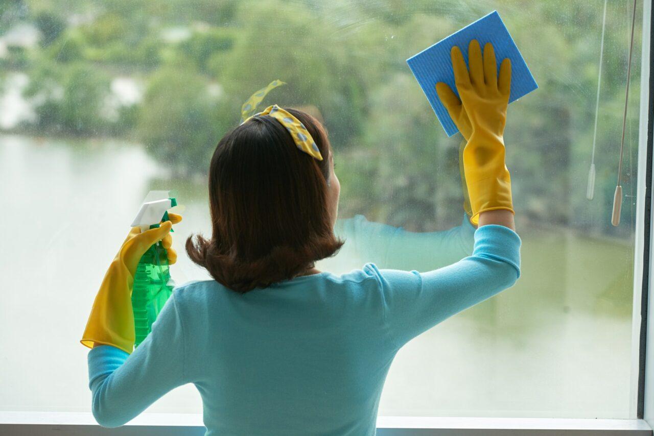 trabalhador doméstico